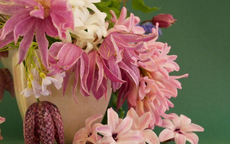 Strauß Clematis macropetala Ballet Skirt, Hyaznthe, Fritillaria meleagris