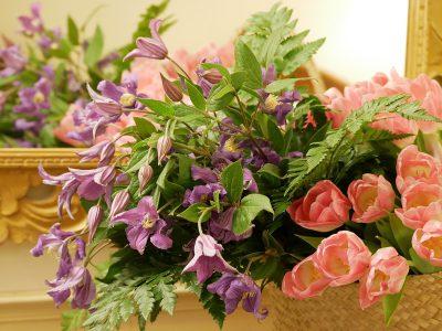 Clematis vom Floristen