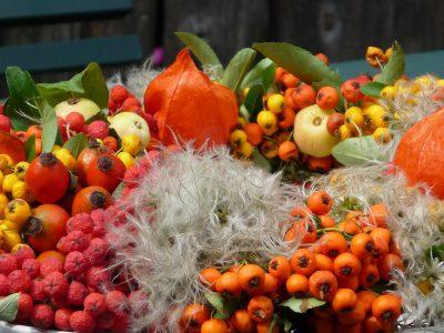 Kranz mit Fruchtständen der heimischen Clematis