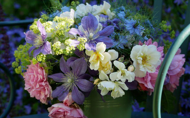 Strauß mit Clematis Arabella, Rose Uetersens Rosenprinzessin und Lykkefund, Nigella und Frauenmantel