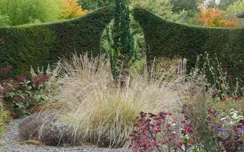 Le Jardin de Valérianes - Gräserbeet