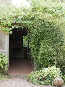 Eingewachsenes Häuschen im Eingangsbereich