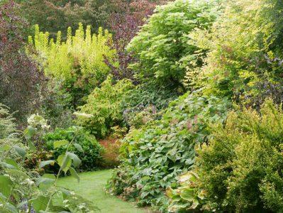 Le Jardin de Valérianes - Blattformen und -farben im asiatischen Garten