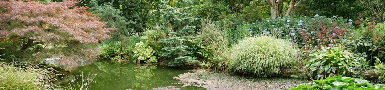 Le Jardin de Valérianes - Teich im asiatischen Gartenteil