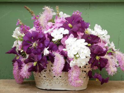 Strauß mit Clematis Etoile Violette und Sanguisorba Pink Brushes